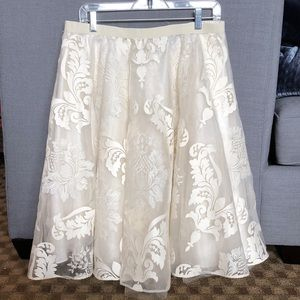 Baraschi tulle skirt with embroidered mesh overlay
